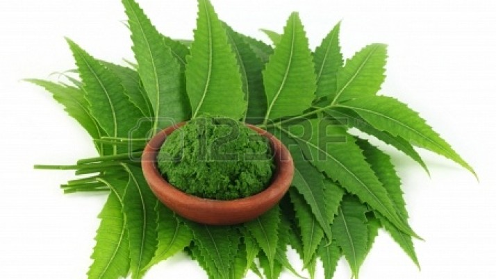 Neem for dandruff