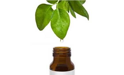 Tea tree oil treatment for Rosacea