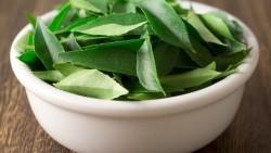 Natural formulas to treat dandruff