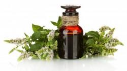 Tea tree oil for treating keloids