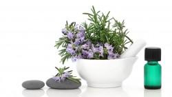 Benefits of mugwort essential oil