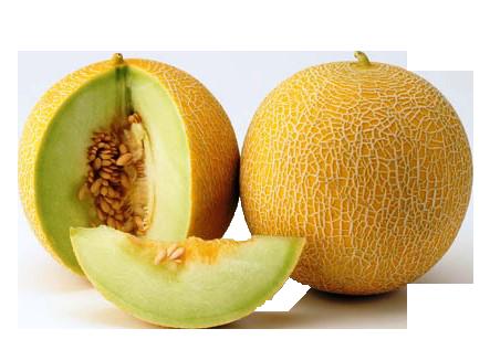 Benefits of Galia Melon