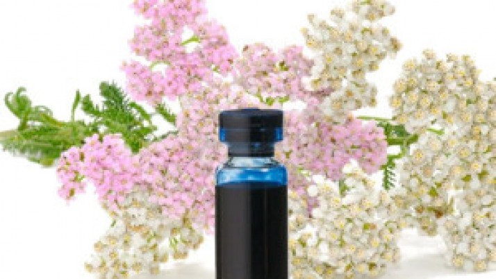 Benefits of yarrow essential oil