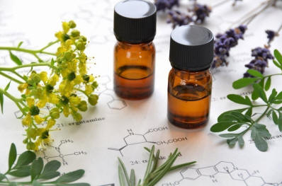 Amazing health benefits of goldenrod essential oil