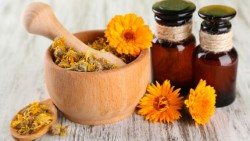 Wonderful benefits of tagetes essential oil