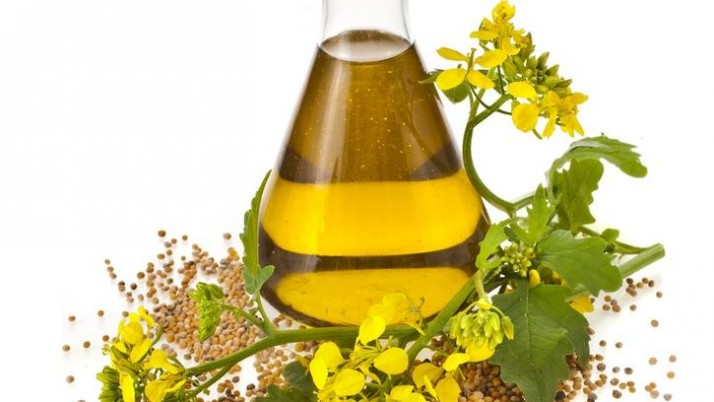 How much dill essential oil is beneficial for you?