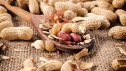 Are Peanuts Good For Weight Loss?
