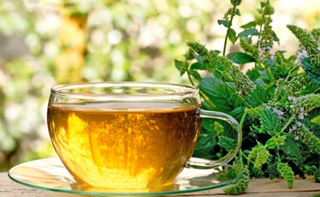 Can Peppermint Tea Help You Lose Weight?