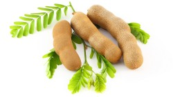 Best Ways Tamarind Helps You to Lose Weight