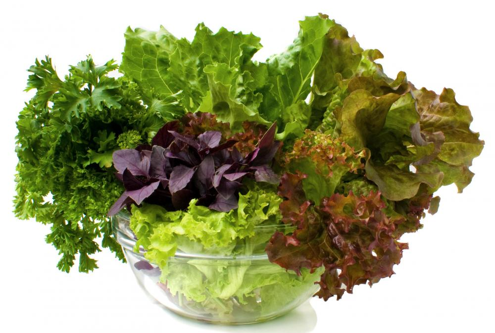 Iron Rich Vegetables You Should Include In Your Diet