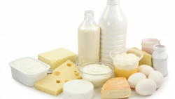Calcium Rich Foods You Should Include In Your Diet