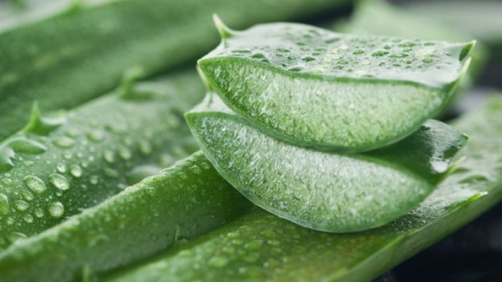 Simple and amazing herbal remedies for skin