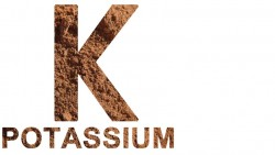 Benefits Of Potassium
