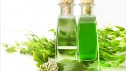 IS Tea Tree Oil Helpful  in Treating Pimples?