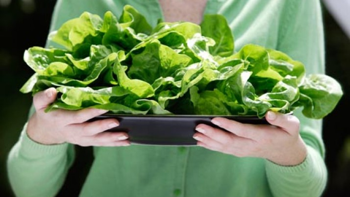 Health Checklist and Diet plan for women