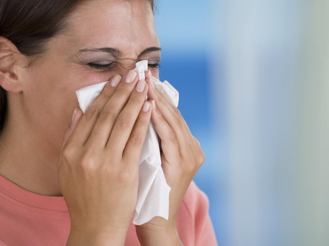 Mold and Allergy Systems