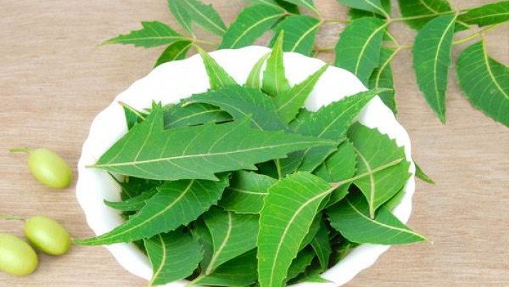Neem Face Packs For All Skin Types