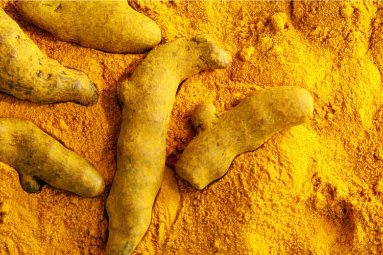 SIMPLE WAYS OF USING TURMERIC TO CURE PIMPLES