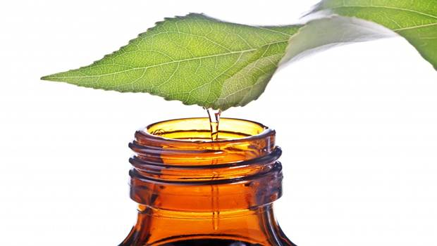 Simple Methods Using Tea Tree Oil To Cure Acne