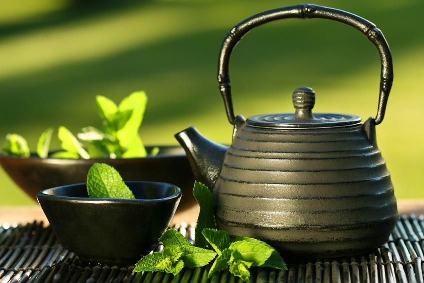 Green teas that taste amazing