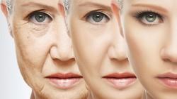 Natural Facial Packs for wrinkles