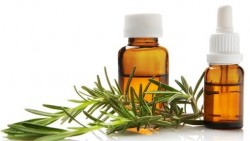 Healthy benefits of rosemary