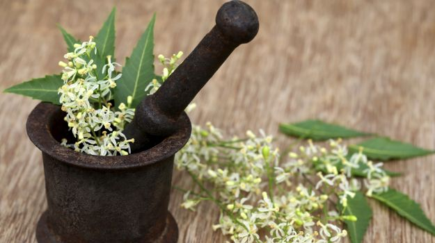 Is Neem An Effective Cure For Eczema?