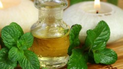 Peppermint Oil Treat Acne?