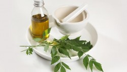 Ways in Which Neem Oil Can Reduce Dandruff